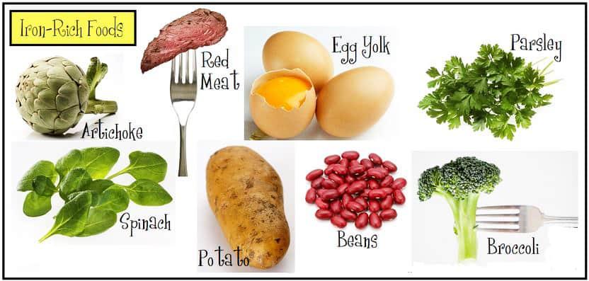 Đâu là chế độ dinh dưỡng để rụng trứng đúng ngày? 1