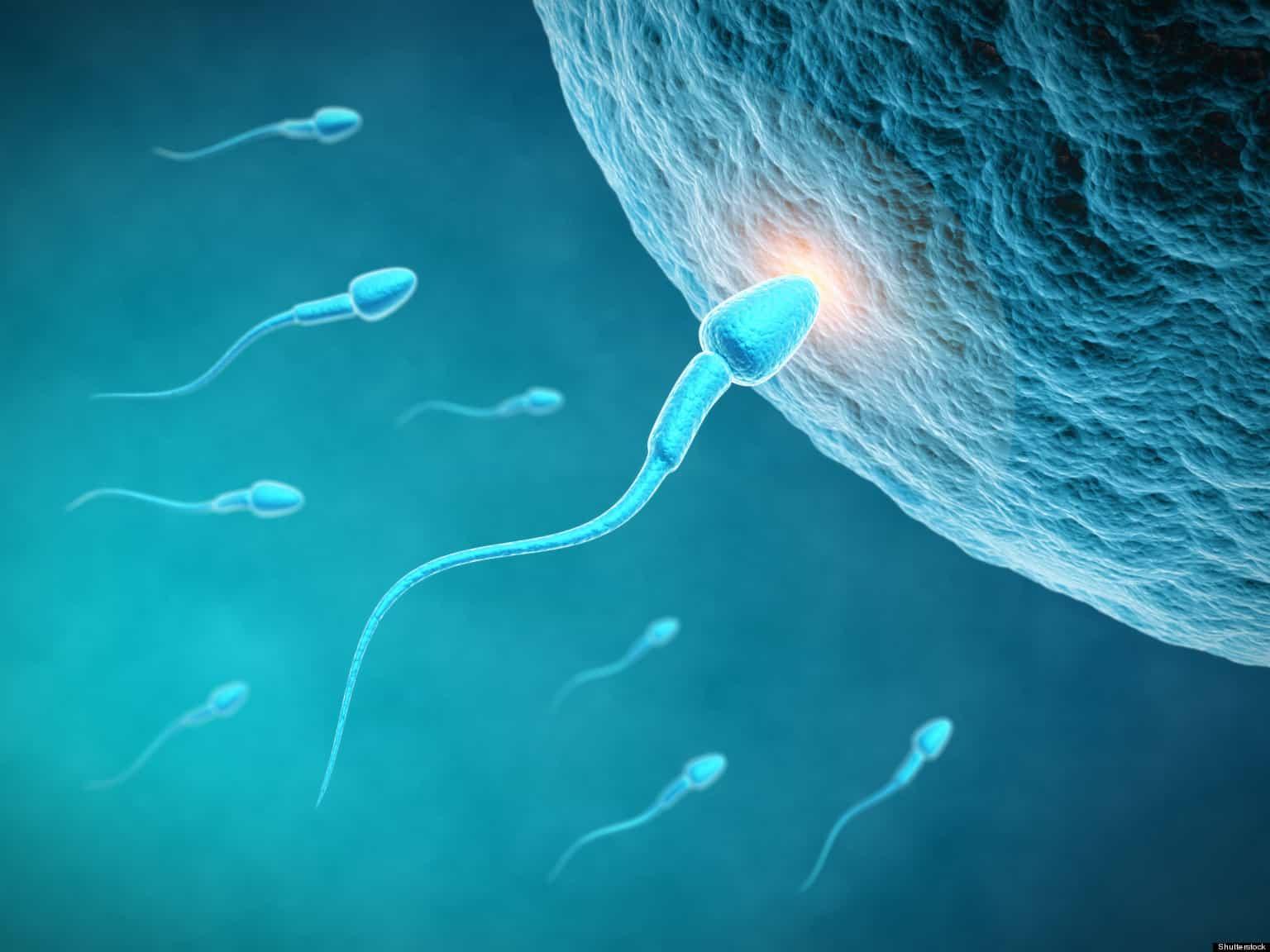 Môi trường sống làm suy giảm chất lượng tinh trùng gây vô sinh