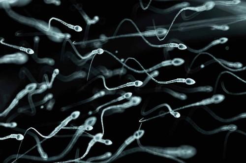 Nguyên nhân và phương pháp điều trị thiểu năng tinh trùng