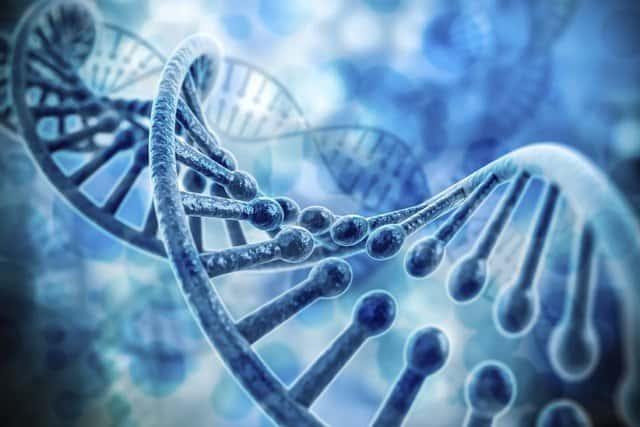 phôi bất thường trong di truyền